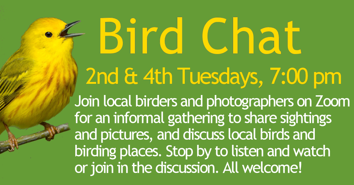 BirdChat-2nd-4th-Tues
