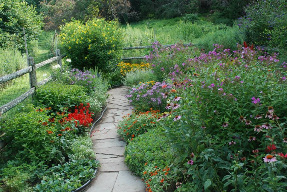 Butterfly and Hummingbird Garden at Pruyn Sanctuary. Photo: SMRA/Anne Swaim.