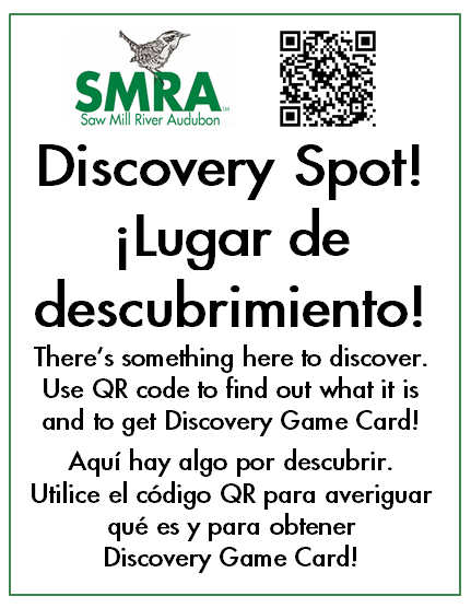 Discovery-Sign