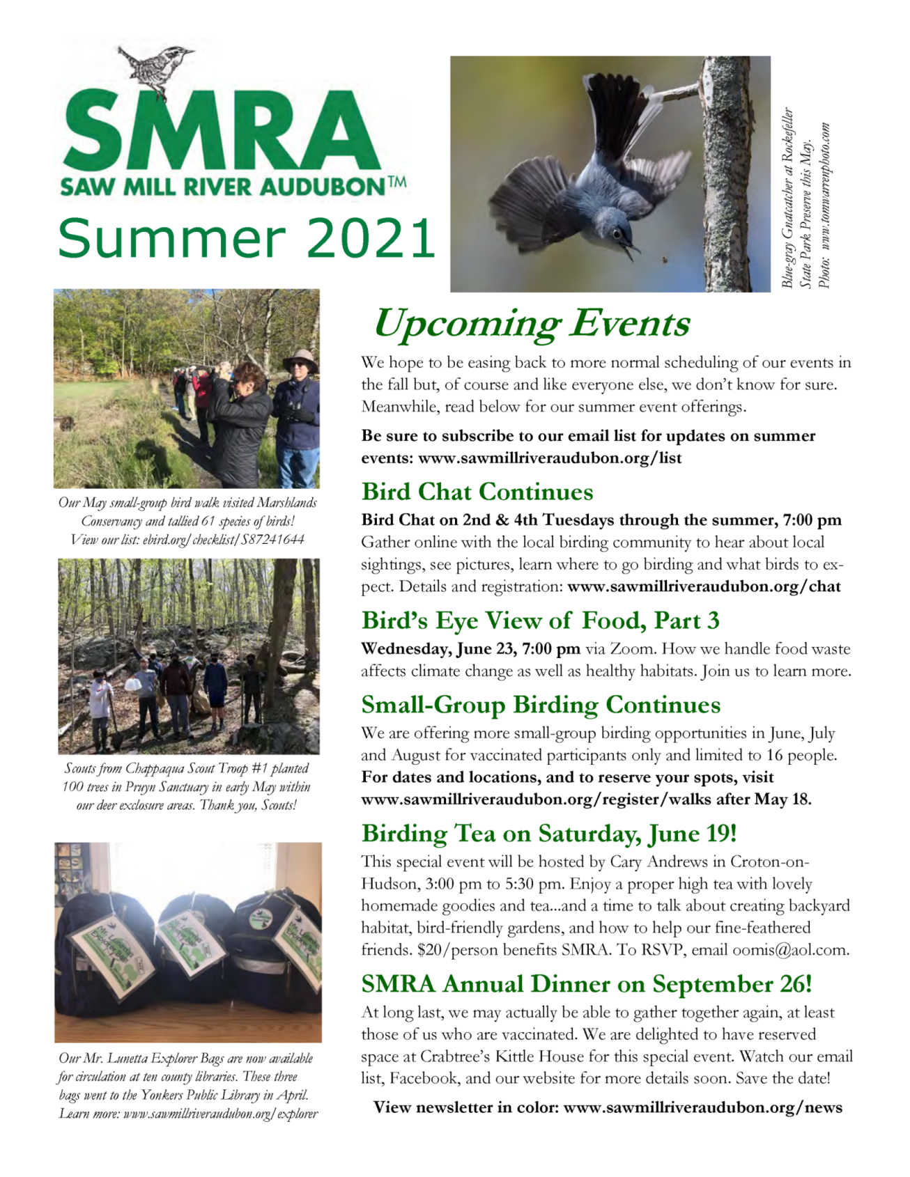 click above to download our latest newsletter